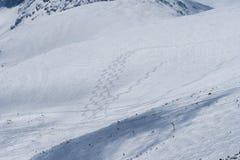 Skispur-c$rila-cc$musala Lizenzfreie Stockfotografie