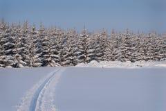 Skispuren lizenzfreies stockbild