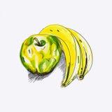 Skissa äpplet och bananen Arkivfoto