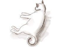 Skissa av en katt Royaltyfri Foto