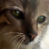 Skissa av en katt arkivfoto