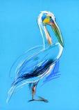 Skissa av en pelikan Royaltyfria Foton