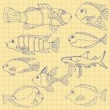 Skissa av havsfisk på en skolaanteckningsbok i en bur Klottervektor royaltyfri illustrationer