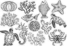 Skissa av havsskal, fisk, koraller och sköldpadda Hand tecknad vektorillustration stock illustrationer