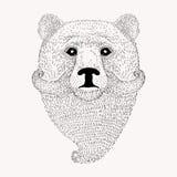 Skissa björnen med ett skägg och en mustasch Hand dragen illus vektor illustrationer