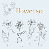 Skissa blommauppsättningen Royaltyfri Fotografi