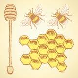 Skissa den honungceller, pinnen och biet i tappningstil royaltyfri illustrationer