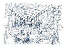 Skissa Freehand av inre av den tropiska botaniska trädgården mycket av kultiverade växter med frodig lövverk Grov teckning av royaltyfri illustrationer