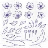 Skissa stilblomningkörsbäret, eller blommor för äppleträd, förgrena sig och sidor på anteckningsboksidan Hand drog vårbeståndsdel vektor illustrationer