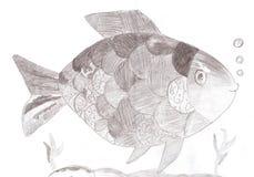 Skissa teckningen av en fisk Royaltyfri Fotografi