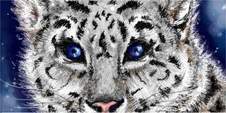 Skissad snöleopard Arkivbild