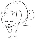 Skissera katten Royaltyfri Bild
