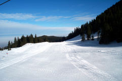 Skisteigung Lizenzfreie Stockfotografie