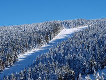 Skisteigung Lizenzfreie Stockbilder