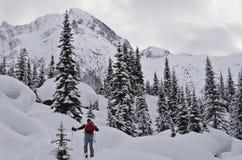 Skitouring στο εθνικό πάρκο παγετώνων Στοκ Εικόνες