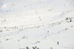 Skitouring com vista de surpresa das montanhas na neve bonita do pó do inverno foto de stock
