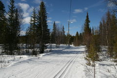 Skitrack in de vroege lente Stock Fotografie