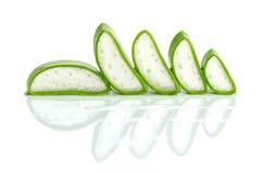 Skiva aloe Vera en mycket användbar växt- medicin för hudomsorg och Royaltyfria Bilder