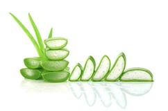 Skiva aloe Vera en mycket användbar växt- medicin för hudomsorg och Royaltyfri Bild