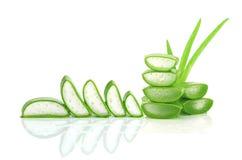 Skiva aloe Vera en mycket användbar växt- medicin för hudomsorg och Arkivbilder