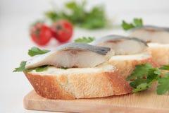 Skiva av bagetten med sillen, smör och parsley Fotografering för Bildbyråer