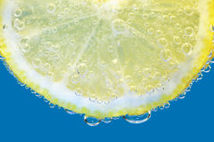 Skiva av citronen Arkivbild