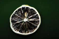 Skiva av citronen på det gröna vattnet Royaltyfri Fotografi