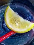 skiva av en citron i ett sprakling vattenexponeringsglas Royaltyfri Fotografi