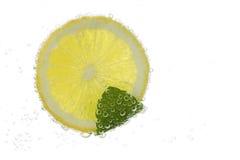 Skiva av en citron i kolsyrat vatten arkivfoto