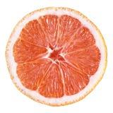 Skiva av grapefrukten Arkivbilder