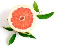 Skiva av grapefrukten som isoleras på vitbakgrund Royaltyfria Bilder