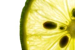 Skiva av limefrukt på vit royaltyfri bild