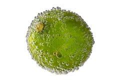 Skiva av limefruktcitronen i vatten som isoleras på vit bakgrund med b Arkivfoton
