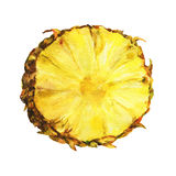 Skiva av ny ananas Arkivbilder