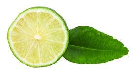 Skiva av ny kaffirlimefruktfrukt med bladet Royaltyfria Bilder