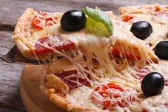 Skiva av pizza med horisontalsalami. makro. royaltyfria bilder