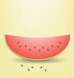 Skiva av vattenmelonen royaltyfri illustrationer