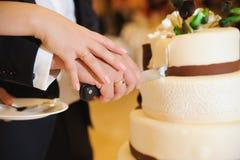 skiva för cake Royaltyfri Bild