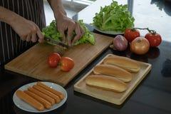Skiva grönsaker för att förbereda ingredienser för framställning av varmkorvar royaltyfria foton