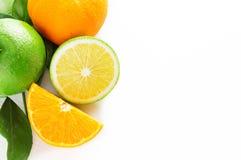 Skiva och halva av frukt Fotografering för Bildbyråer
