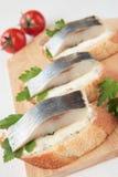 Skiva tre av bagetten med sillen och parsley breder smör på Royaltyfri Fotografi