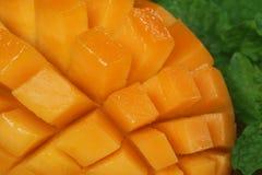 Skivad mango med den gröna mintkaramellen Royaltyfri Bild