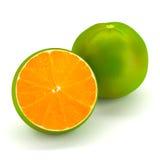 skivad orange Royaltyfri Bild