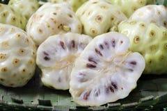 Skivad ostfruktNoni frukt i den Rarotonga kocken Islands Royaltyfria Bilder
