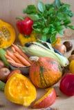 Skivad pumpa och sorterade grönsaker royaltyfri fotografi