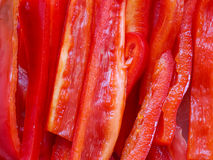 skivad spansk pepparred royaltyfri bild