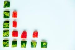 Skivad vattenmelon på vit bakgrund Fotografering för Bildbyråer