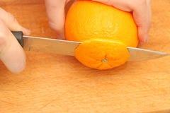 Skivade apelsiner på ett träd Arkivbild