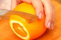 Skivade apelsiner på ett träd på partiklarna Royaltyfria Foton
