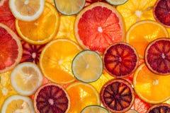 Skivade blandade citrusfrukter Royaltyfri Foto